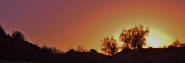 South Mountain sunset - photo by A. Sato