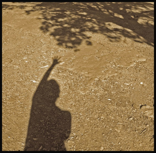 Reaching - A. Sato
